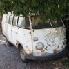 vw t1 bus 67' - last post by johnny02