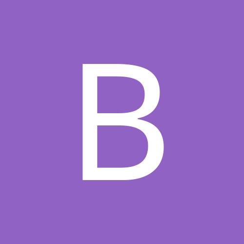 bruno_polo9n